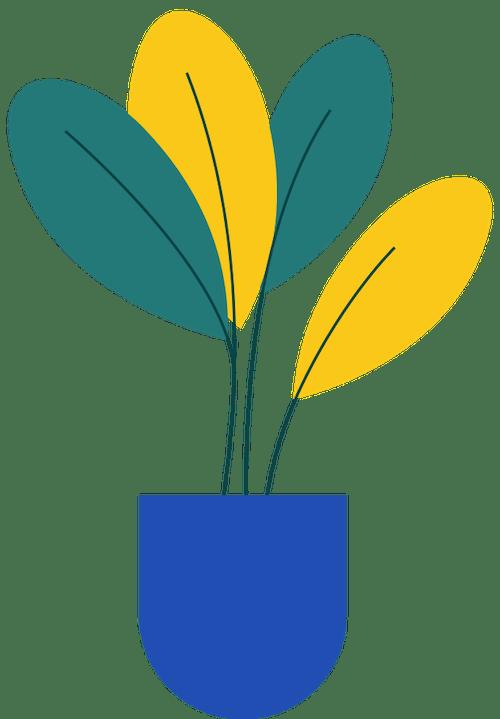 Small Plant 5